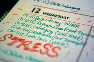 Day 23 - STRESS by Alicia Ryan, CC