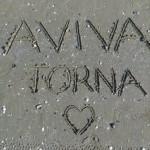 Aviva torna és endometriózis: lehet vagy nem lehet? – I. rész: az Aviva tornáról